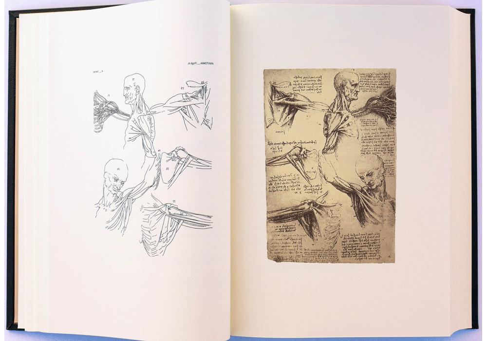 Facsímil, Leonardo da Vinci: Códice dell\'anatomía, Anatomía, italiano