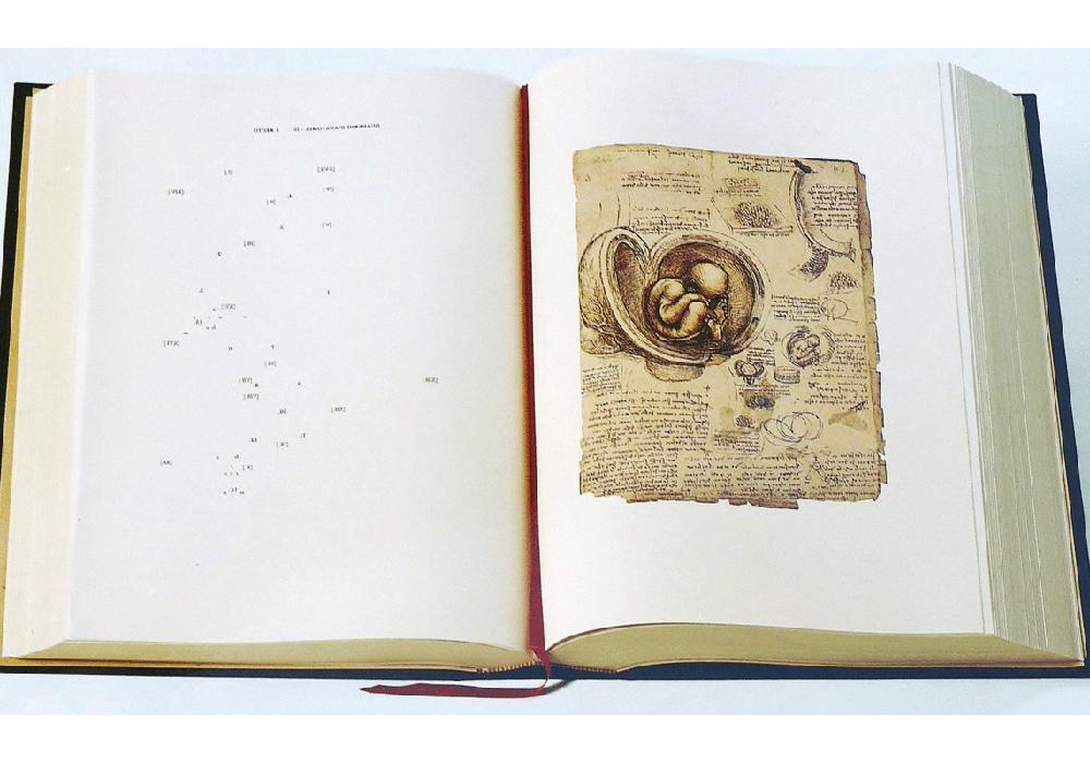 Facsímil, Leonardo da Vinci: Quaderni di anatomía,The Royal Collection
